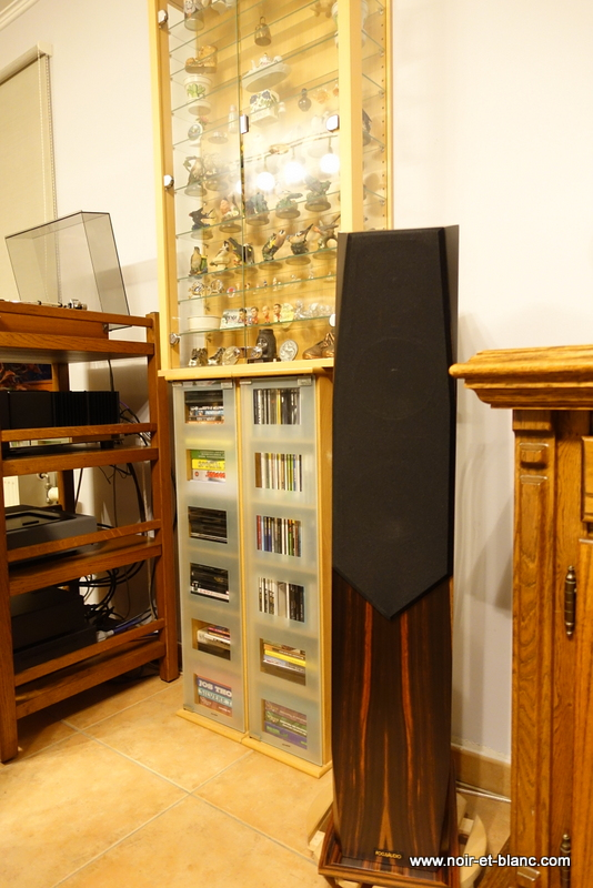 FOCUS AUDIO FP88SE